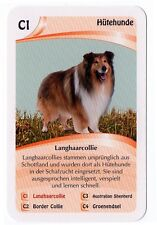 Dogs - Single German Trade Card Long Haired Collie