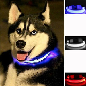 LED Dog Pet Collar Nylon Luminous Flashing Adjustable Night Safety Light Up