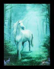 3d Cuadro con unicornio - bosque - Anne Stokes Fantasy Póster Lienzo impresión