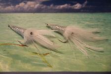 2 V Fly Size 1/0 Ultimate Predator Alphonse Big Squidz Saltwater Flies