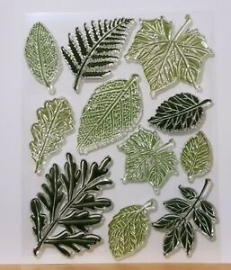 Large Leaf & Leaves Clear Stamp Set - 11 Different Stamps - BNIP - FREE P & P