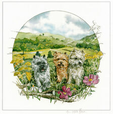 """CAIRN TERRIER SCOTTISH DOG FINE ART LIMITED EDITION PRINT - """"In the Field"""""""
