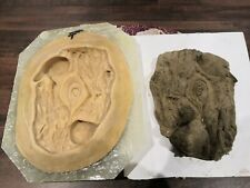 Fibreglass And Latex Moulds