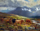 FRAMED CANVAS Art print giclee Over the Moorland Tulloch highland cattle cows