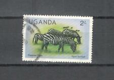 T59 - UGANDA 1979 - MAZZETTA DI 12 ZEBRA - VEDI FOTO