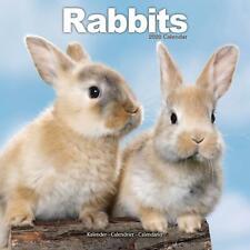Rabbits 2020 Official Square Wall Calendar