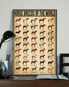 Horse Breeds of the World Home Decor Wall Art Poster