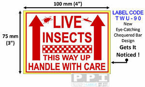Red LIVE INSECTS Handle With Care Labels Sticker Pet Shop Store 100x75mm TWU-90