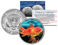 GOLDFISH  * Fish Series * JFK Kennedy Half Dollar U.S. Colorized Coin