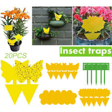 20x Sticky Butterfly Fly Paper Trap Fruit Flies Insect Aphids Glue Catcher Trap