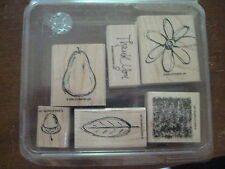 "Set of 6 Stampin Up!  ""All Natural"" Rubber Stamps 2003"