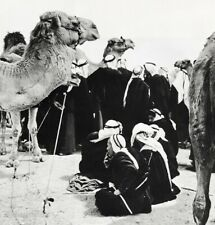 1966 Beersheba Camel Market By Alfred Eisenstaedt Israel Desert Vintage Photo