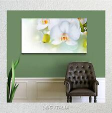Orchidea bianca zen QUADRO MODERNO QUADRI MODERNI ARREDAMENTO CASA STAMPA TELA