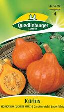"""Quedlinburger Hokkaido """"uchiki Kuri"""" Cucurbita semillas de calabaza semillas"""