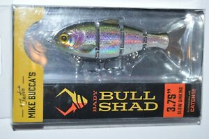 """Catch co mike bucca's baby bull shad swimbait 3.75"""" slow sink rainbow trout"""
