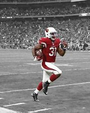 Arizona Cardinals DAVID JOHNSON Glossy 8x10 Photo Print NFL Spotlight Poster