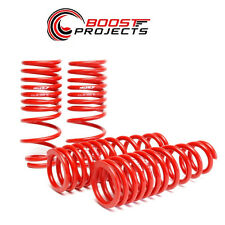 Skunk2  '96-'00 Civic Lowering Springs 519-05-1550