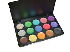 15 Color Natural Camouflage Creamy Palette Set Makeup Facial Professional Beauty