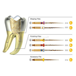 US Dental Endodontic X-Pro Gold Taper NITI Rotary Files Tip Assorteds 25mm