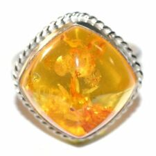 Baltic Amber Ring Russia Kaliningrad Region