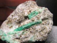 Emerald Crystals in Metamorphic Matrix