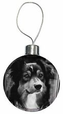 Border Collie in Window Christmas Tree Bauble Decoration Gift, AD-CO70CB