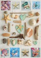 SEA SHELL COLLAGE 1000 Piece Jigsaw Puzzle, Educa Borras