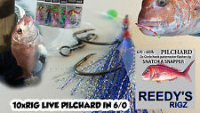 10 Snapper Snatcher Flasher rigs 6/0 Pilchard Snapper Rig Flathead Bottom Ledger
