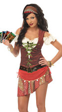 EYE CANDY MYSTIC GYPSY DELUXE FORTUNE TELLER HALLOWEEN COSTUME WOMEN PLUS SZ 2X