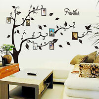 PD Wall Decal Sticker Large Vinyl Photo Picture Frame Removable Family Tree New
