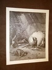 Incisione Gustave Dorè 1880 Bibbia Conversione Saulo San Paolo Bible Engraving