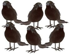 Black Feathered Small Crows Birds Ravens Props Décor Halloween Decorations 6pk