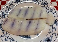 Realistic Artificial Faux Fake Food  Replica Fish Seafood Grilled Tilapia  PROP