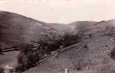 QUINCE-EN-BEAUJOLAIS 2 vallée de cherves