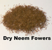 Neem Dry Flowers used for ceremonies in Southern India also culinary