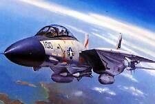 Hobby Boss F-14A Tomcat 3 Versions VF-41 & 111 modèle-kit 1:72 kit