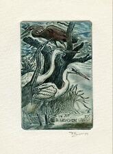 David Bekker, Ukraine, Original Etching Ex libris Bookplate. Herons, Birds
