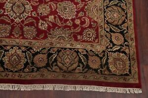 All-Over Classic Floral Agra RED/BLACK Living Room Area Rug Hand-Knotted 9'x12'