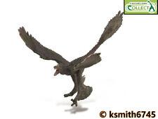 CollectA MICRORAPTOR 1:6 SCALE solid plastic toy DINOSAUR prehistoric animal NEW