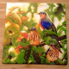 Paper Napkins Serviettes Bird Colourful Garden Tree Pretty Sweet 3 Ply Pack 20