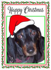 "DACHSHUND DOG SANTA HAT QUALITY GLOSSY CHRISTMAS CARD 8""x 6"" FREE POST"