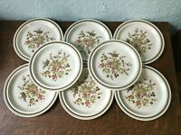 Royal Doulton Lambethware Gaiety Floral & Brown Band Dinner Plates Set of 8