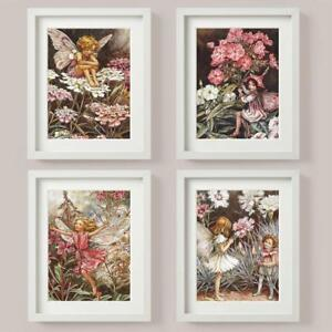 FLOWER FAIRIES SET 4 Picture Print Candytuft  ROSE bay willow Phlox PINKS FAIRY