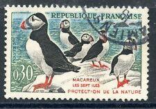 TIMBRE FRANCE OBLITERE N° 1274 OISEAUX - LES MACAREUX-MOINES