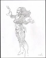 Mike Hoffman Signed Original Fantasy Art Pencil comic artist