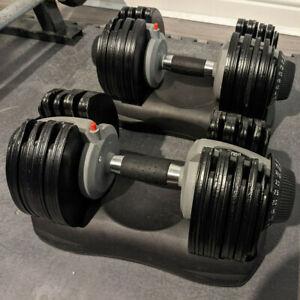 Everlast Adjustable Dumbbell Pair 5kg - 32.5kg