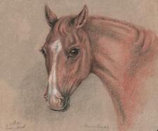 BEAUTIFUL OLD MASTER HORSE PORTRAIT STUDY Chalk Drawing 1816 SIGNED MH