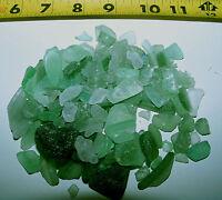 1/4 LB GREEN - ICE COLOR BEACH SEAGLASS SEA GLASS SHELLS CRAFTS WEDDINGS JEWLERY