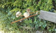 Bird Live Humane Net Trap Piege Oiseaux Vogelfalle Cage Bird Ringing 45cm