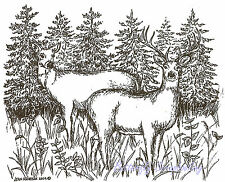Deer Buck and Doe in Pines Wood Mounted Rubber Stamp Northwoods Stamp P9521 New